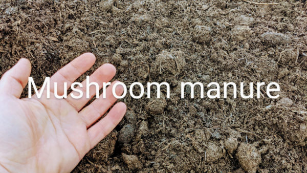 Mushroom Manure topsoil from organic material in Chilliwack